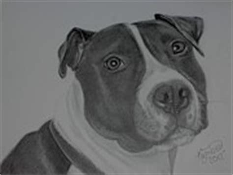 Best Drawer In The World by Wolf Drawing 5 Days Do You Like It By Xxxboastancoxxx