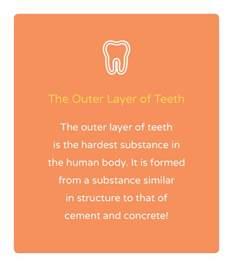 Image result for Dental