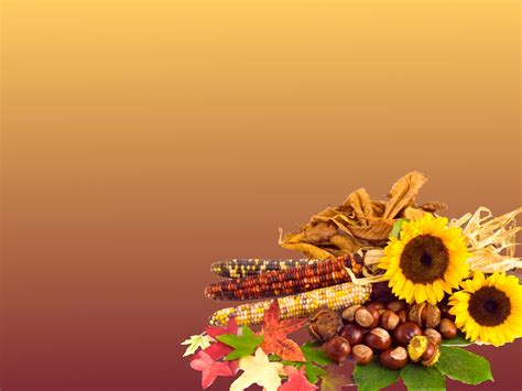thanksgiving powerpoint templates free thanksgiving powerpoint backgrounds