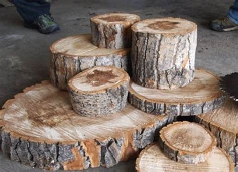 23 best images about Decorating with tree stumps on