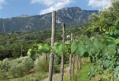 i giardini di eidos sant agata dei goti i giardini di eidos casa vacanze asant agata dei goti