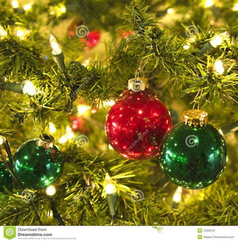 shiny christmas balls on tree stock photo image of green