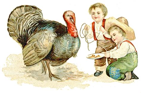Thanksgiving Free Clip Vintage by Thanksgiving Antique 1909 Thanksgiving Turkeys