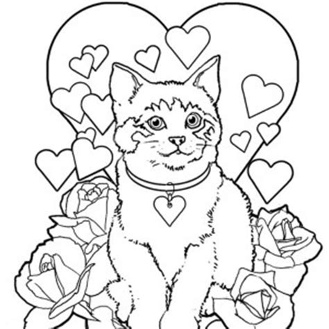 color by numbers coloring book of kittens and cats a kittens and cats color by number coloring book for adults for relaxation and stress relief color by number coloring books volume 13 books cat coloring pages bestofcoloring