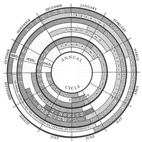 charts constructing an annual cycle radial diagram in