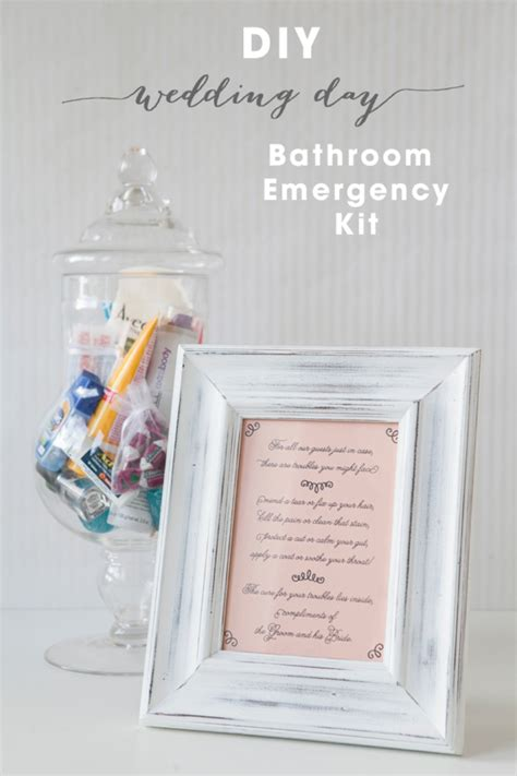 bathroom survival kit learn how to make your own bathroom emergency kit