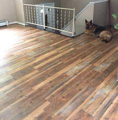 Great Waterproof Flooring Lowes To Choose
