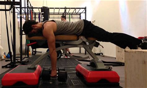 high bench two dumbbell rowing the quot seal row quot a unique exercise for a bigger back