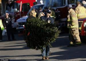 26 christmas trees sandy hook hook shooting trees donated as memorial to newtown victims daily mail