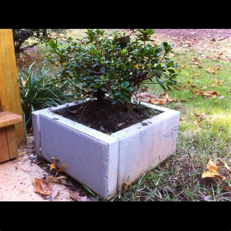 Concrete Paver Planters by Paver Planters Permaculture