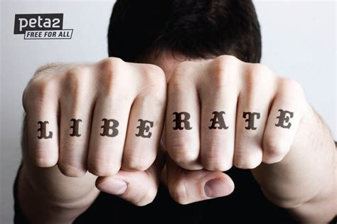 knuckle tattoo healing 1000 images about knuckle tattoos on pinterest tony