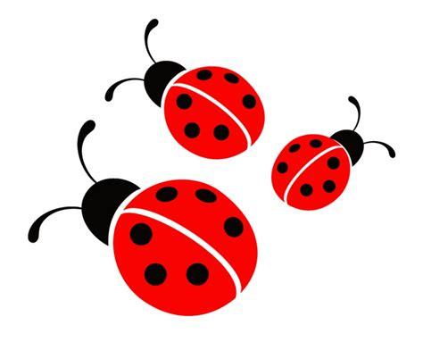 ladybugs clipart   ladybug png transparent