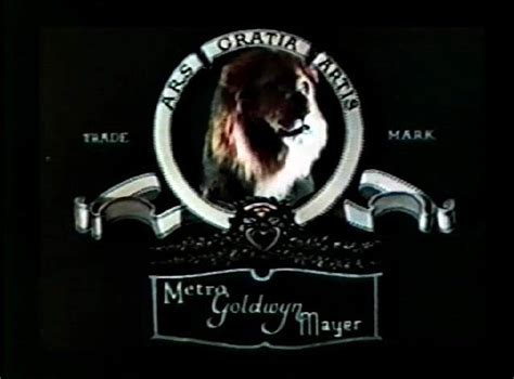 film mgm lion buckles blog 09 01 2011 10 01 2011