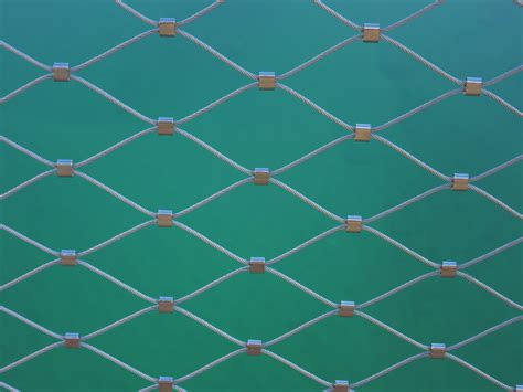 wire pattern free images texture leaf floor wire pattern line