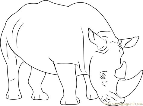 coloring pages rhino sad rhino coloring page free rhinoceros coloring pages