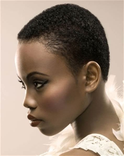 google african american natural hairstyles short natural hairstyles for black women 2012 google