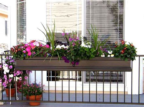 Deck Railing Flower Planters by Best 25 Deck Railing Planters Ideas On