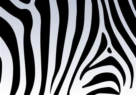 free zebra pattern background zebra print vector background download free vector art