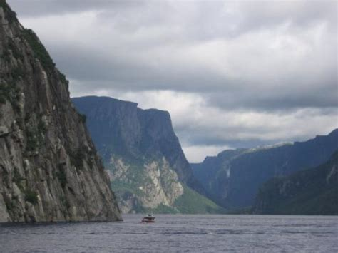 fjord newfoundland fjord western brook gros morne picture of gros morne