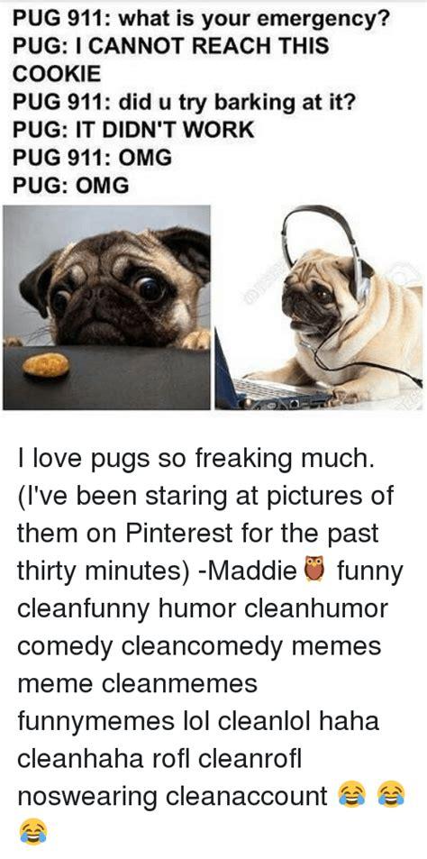 corgi leading pugs 25 best memes about pugs pugs memes