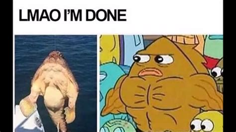 Memes About Cleaning - clean spongebob memes pt 2 youtube