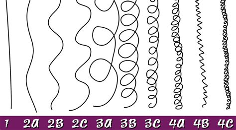 hair pattern quiz what are 4a 4b and 4c hair types answers and picture