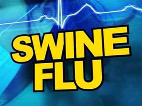 swing flu who recommends annual vaccination to combat swine flu