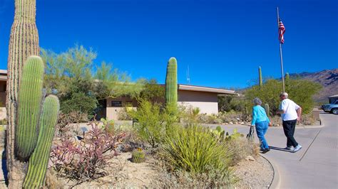 150 Meters To Miles saguaro national park in tucson arizona expedia