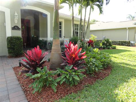 low maintenance tropical landscaping in vero