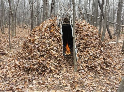 the shelter bushcraft forest group shelter youtube