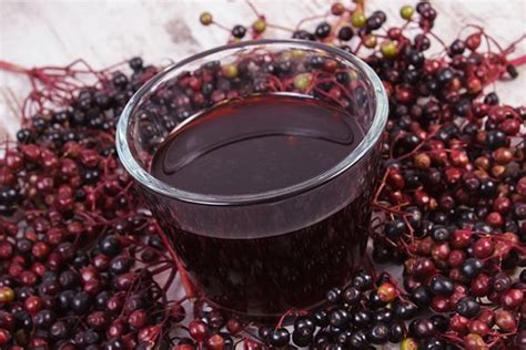 Marmelade Zu 5305 by 23 Beste Afbeeldingen Wilde Eetbare Planten En Kruiden
