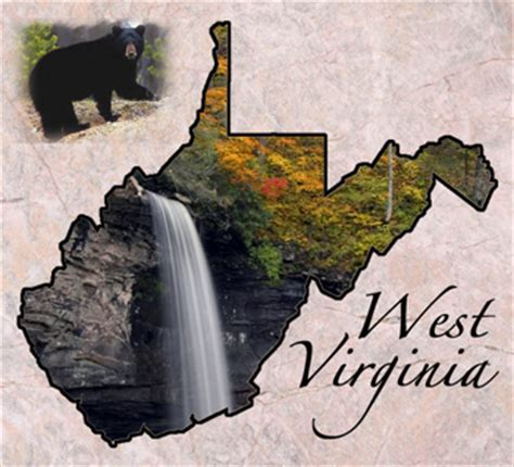 West Virginia Judiciary Search Name Professional Organizers Located In West Virginia