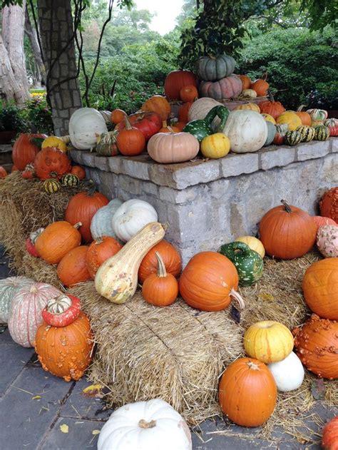 17 best images about autumn activities on pinterest maze