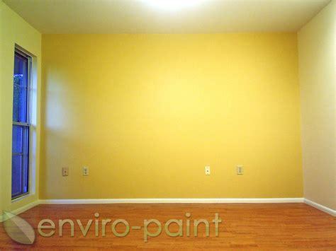enviro paint
