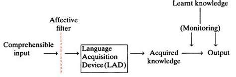 noam chomsky biography ppt language acquisition device tolg jcmanagement co