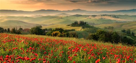 tuscany photo  photography workshop photo day