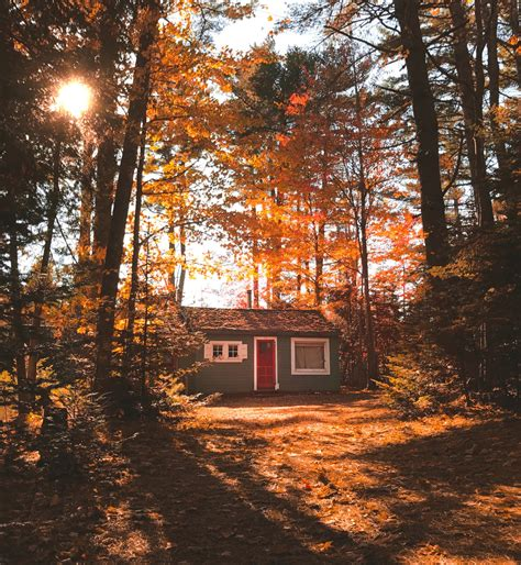 maine air bnb stunning fall photos from acadia national park