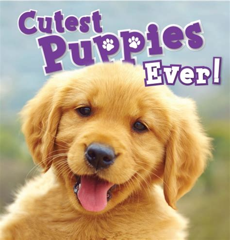 cutest puppies book product cutest puppies book school essentials