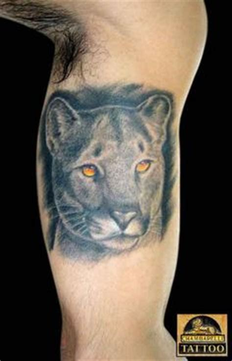 cougar mountain lion tattoo designs 1000 images about panther tattoos on panther