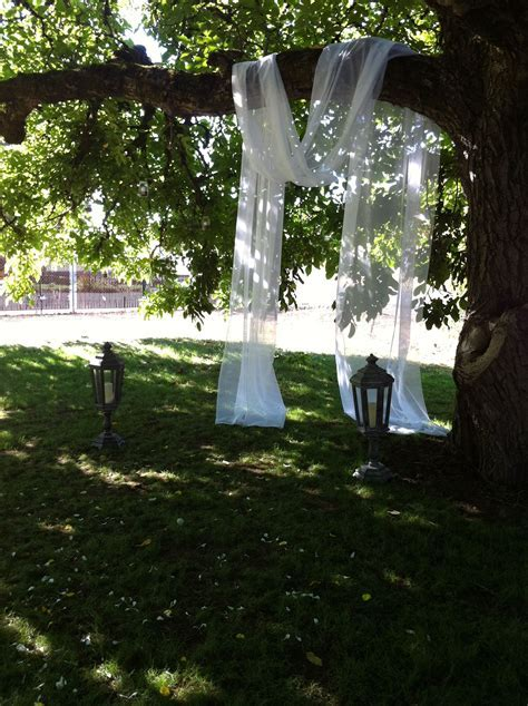drape fabric over tree branches for an alter   DIY Wedding