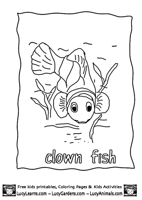 coloring page of a clown fish clown fish coloring pages 283 free printable coloring