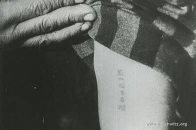 did the nazis tattoo numbers on babies metal sts used to tattoo jewish prisoners of auschwitz