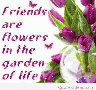flower wallpaper with friendship quotes beautiful flowers wallpapers with quotes on wallpaperget com