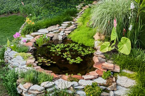 How To Build A Backyard Pond by How To Build A Backyard Pond Blain S Farm Fleet