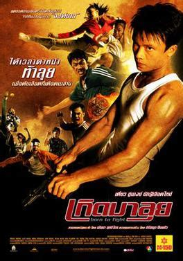 film action fight born to fight 2004 film wikipedia