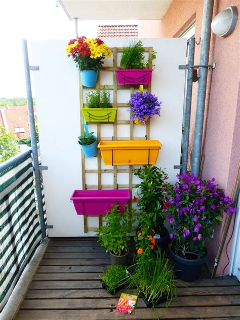 pflanzen ideen die besten 17 ideen zu pflanzen dekor auf