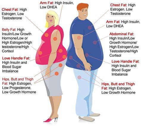 4 weight loss hormones hormones and weight loss