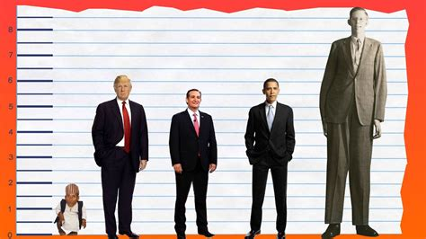 hollywood celebrities real height how tall is donald trump height comparison youtube