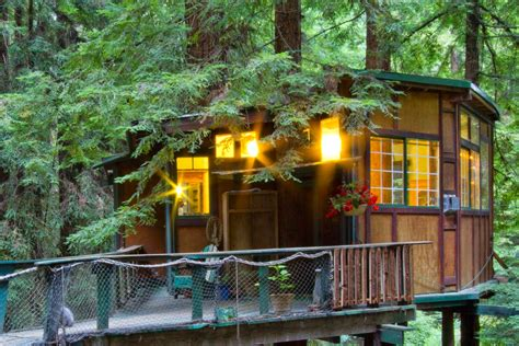 tarzan boat rental texas coolest cabins snug tree house cabin