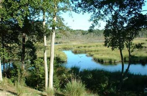 bed and breakfast lewes de lazy l at willow creek bed and breakfast resort in lewes delaware b b rental